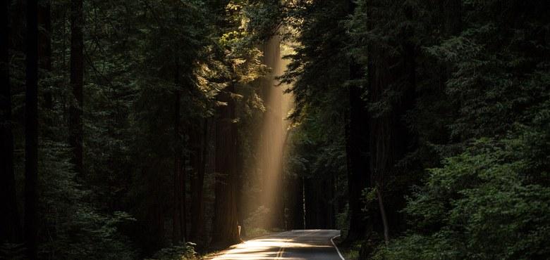 Spirit Experience - Kostbare Momente auf dem Weg nach Ostern