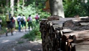 Teaserbild für den Artikel Spirituelles Gehen – auf den Gebhardsberg