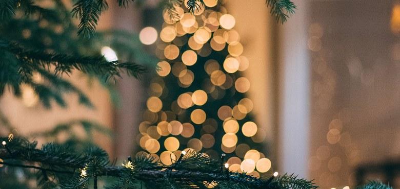 STIMMsterne am WeihnachtsBLECH - Konzert