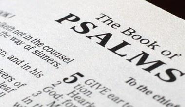 Tesaserbild für den Artikel Wir schreiben gemeinsam das Buch der Psalmen
