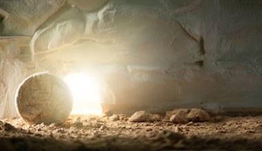 Tesaserbild für den Artikel Ostern - das Leben siegt!