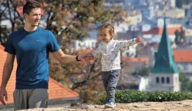 Tesaserbild für den Artikel Vatertag