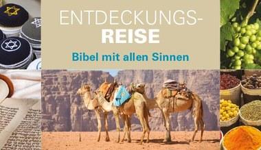 """Teaserbild für den Artikel Wanderausstellung """"Expedition Bibel"""""""