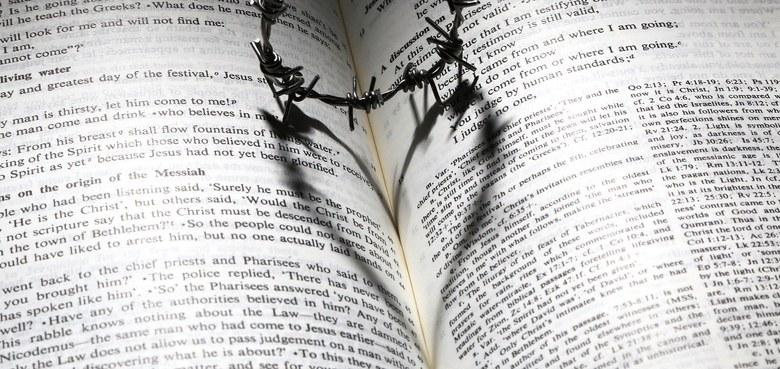 Die Bibel quer-lesen