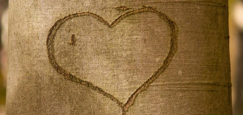 Glückliche Beziehungen sind kein Zufall