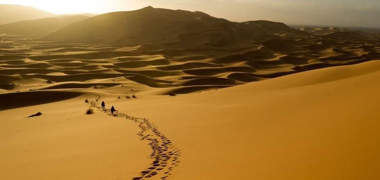 Wüstenerfahrungen