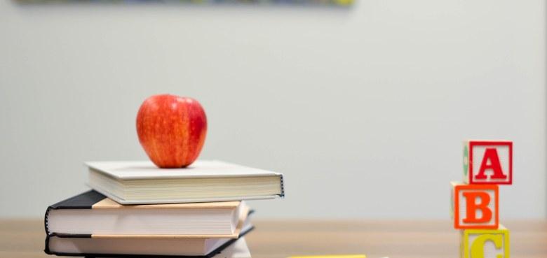 Schule zuhause - wie klappt's?