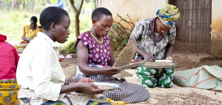 Faire Sache: Absatzplus für Fairtradeprodukte