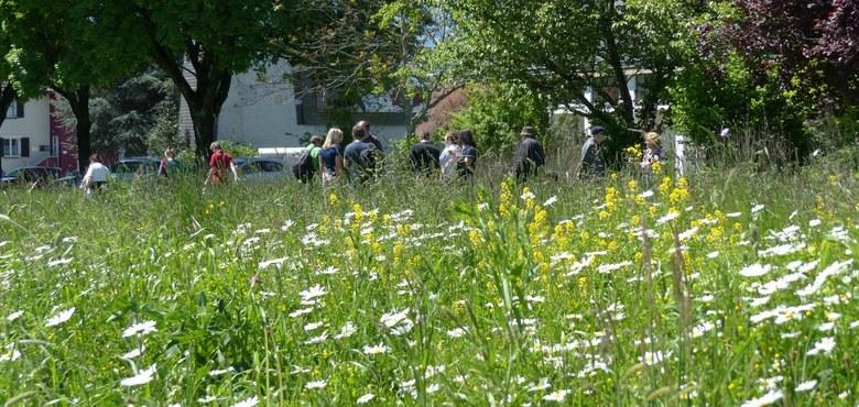 Grün, grüner, Kirche: Treffen der Umweltbeauftragten in St. Arbogast