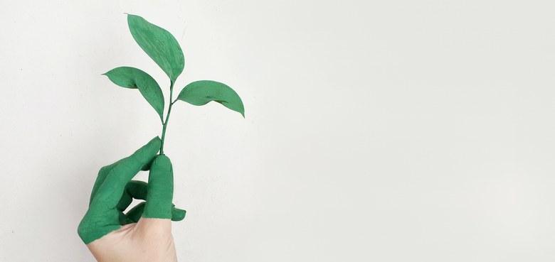 Der Termin wird auf das Frühjahr 2021 verschoben: Fest für unsere Umwelt und alle