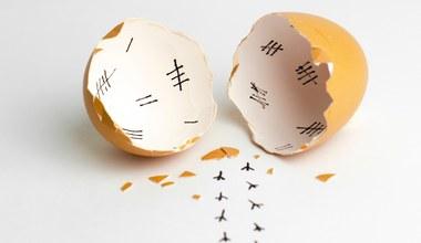 Teaserbild für den Artikel Das Oster-Paradoxon