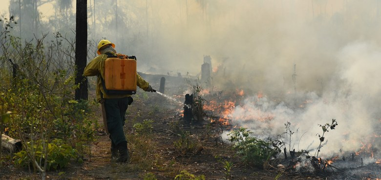 Der Wald brennt