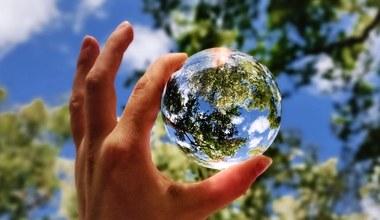 Teaserbild für den Artikel Preis für Nachhaltigkeit