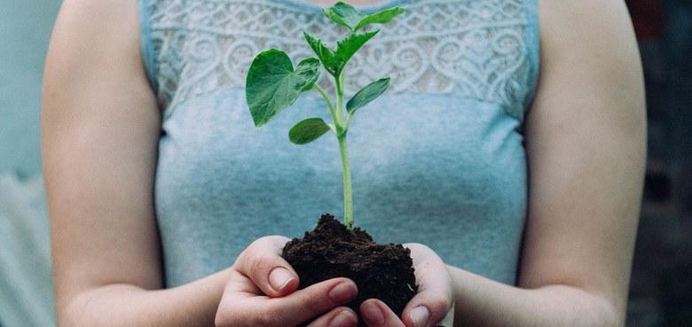 """""""Religions for Future"""": Für das gemeinsame Haus Erde"""