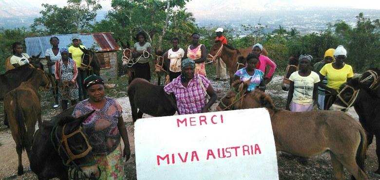Von Maultieren und anderen Eseln