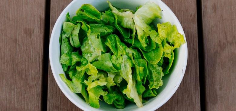 Wildkräutersalate zubereiten