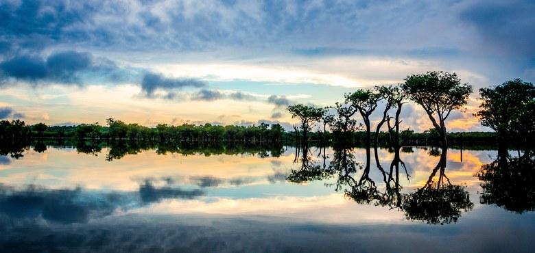 Die Weltkirche blickt nach Amazonien