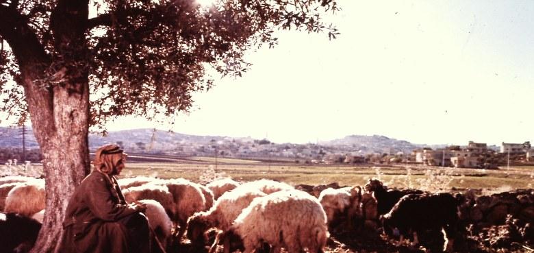 Gedanken zum 4. Sonntag der Osterzeit: Joh. 10, 1 – 10