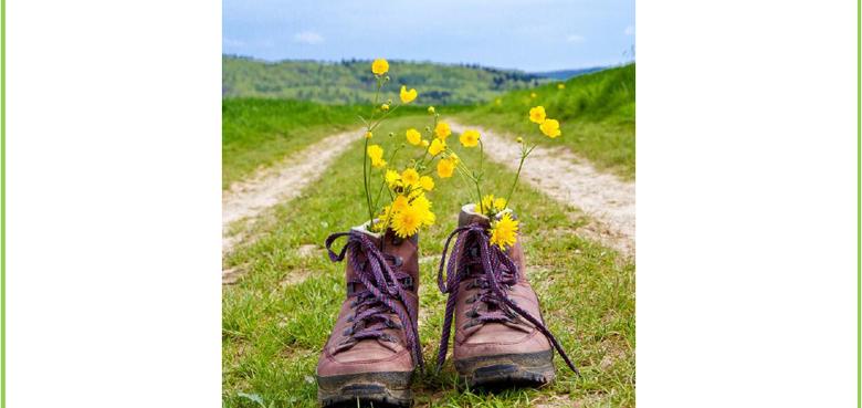 Pilgerweg zu den Werken der Barmherzigkeit