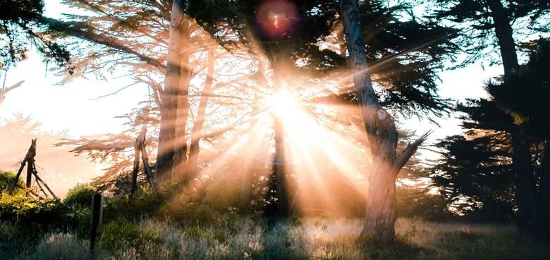 Hochfest der Auferstehung des Herrn