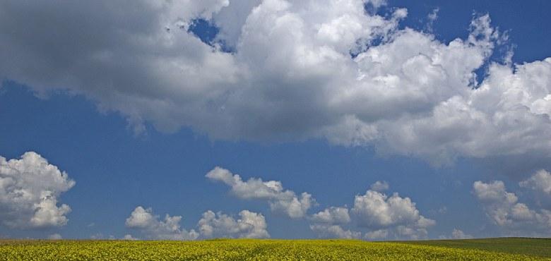 Weißt du, wo der Himmel ist?
