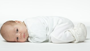 Photo: Paffy/Shutterstock