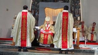 Vorschaubild Priesterweihe und Primiz in Indien